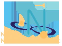 N3 logo